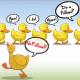 La followbsession : dofollow vs nofollow