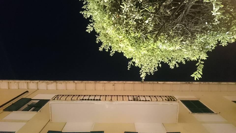 Ciel, immeuble et arbre Pompei