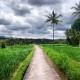Un voyage à Bali balo